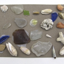 Found Art - Seashells Seaglass
