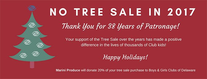 No Tree Sale in 2017